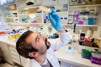 Hans Petter Kleppen har tatt doktorgrad på slemme bakteriofager som går til angrep på melkesyrebakterier. Nå jobber han med snille bakteriofager som angriper slemme bakterier. (Foto: Håkon Sparre/UMB)
