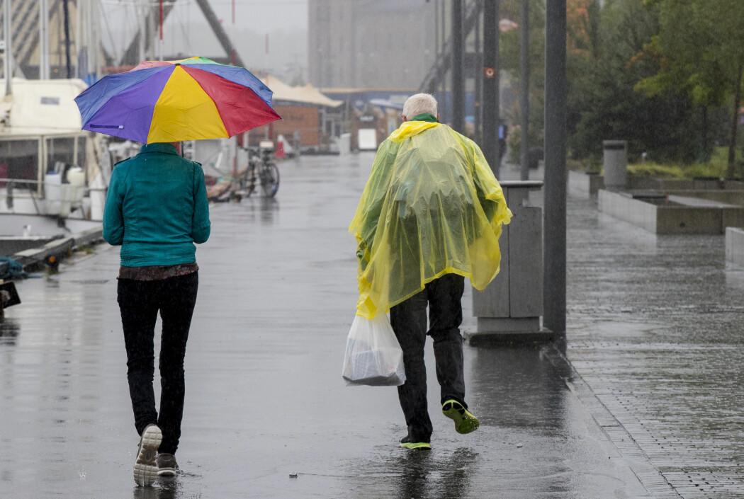 Klimaforsker Erik Kolstad tror mildere vintre er den nye normalen i Norge. Han varsler en våt og mild vinter fram til slutten av mars.