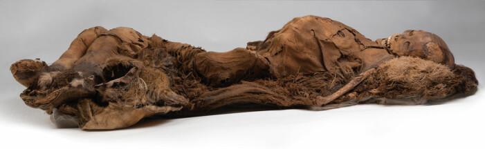 Forskerne vet ikke hva de fire inuittene døde av. Men de var trolig alle under 30 år da de mistet livet.