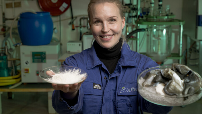 Collagen extracted from fish – better for the climate, suitable for vegetarians