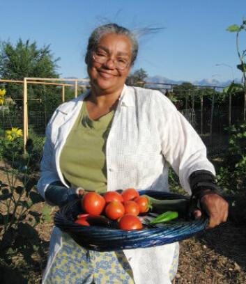 Arbeidet med jordflekken i Fairpark Garden har gitt synlige resultater i form av blant annet tomater. (Foto: Wasatch Community Gardens)