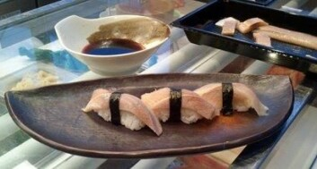 Jomfrusild passer godt til sushi. Det bekrefter flere sushikokker som har fått prøve produktet. (Foto: Arjen Kraaijeveld)