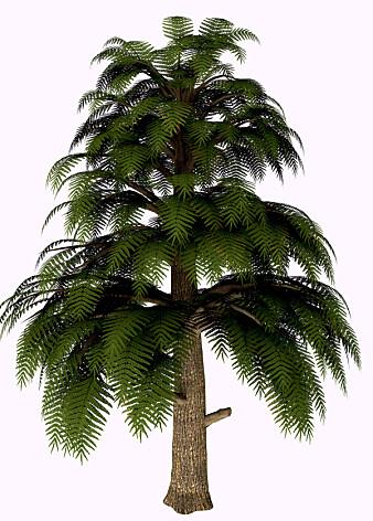 Archaeopteris hadde bregnelignende greiner langs store deler av stammen. Slik ser en kunstner for seg at treet så ut.