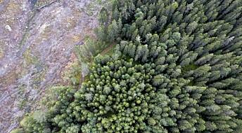 Nytt prosjekt om klimasmart skogbruk i Norge
