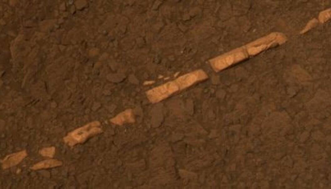 Forskere tror denne åren av gips ble dannet av vann som kom opp fra undergrunnen.