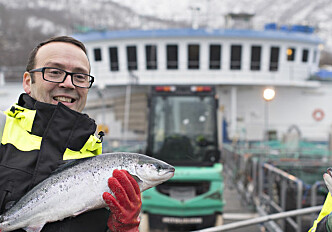 "Increasingly expensive to ""make"" salmon - both in Norway and competitor countries"