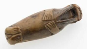 Denne lille hvalrossfiguren ble skåret ut av en hvalrosstann en gang i løpet av middelalderen og oppbevares nå ved NTNU Vitenskapsmuseet i Trondheim.