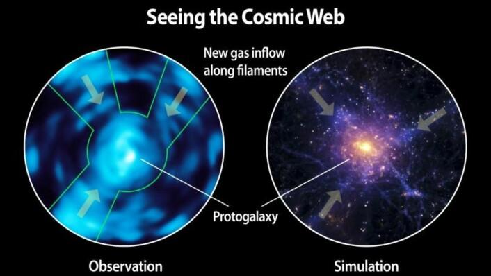 Tidligere har den intergalaktiske gassens struktur bare vært kjent gjennom simuleringer - nå har vi endelig fått et ordentlig bilde. (Foto: Christopher Martin, Robert Hurt)