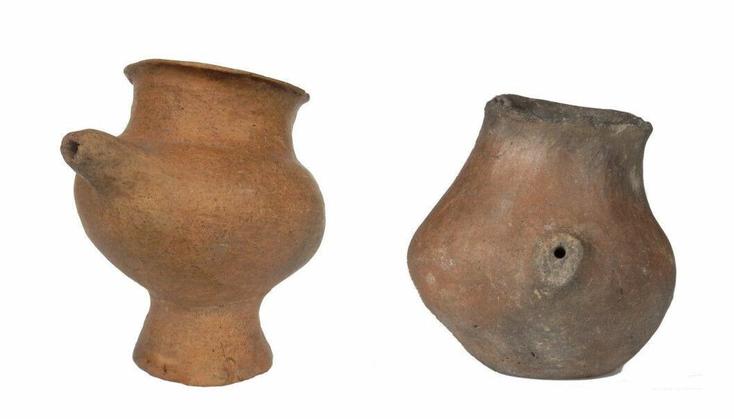 Forskning på tenner har vist at folk i Asia og Europa begynte å drikke dyremelk for minst 5000 år siden.
