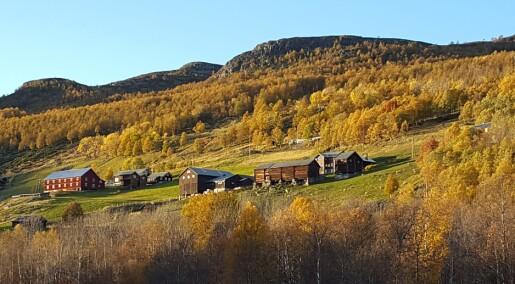 EAT-dietten vil føre til avvikling av store deler av norsk landbruk