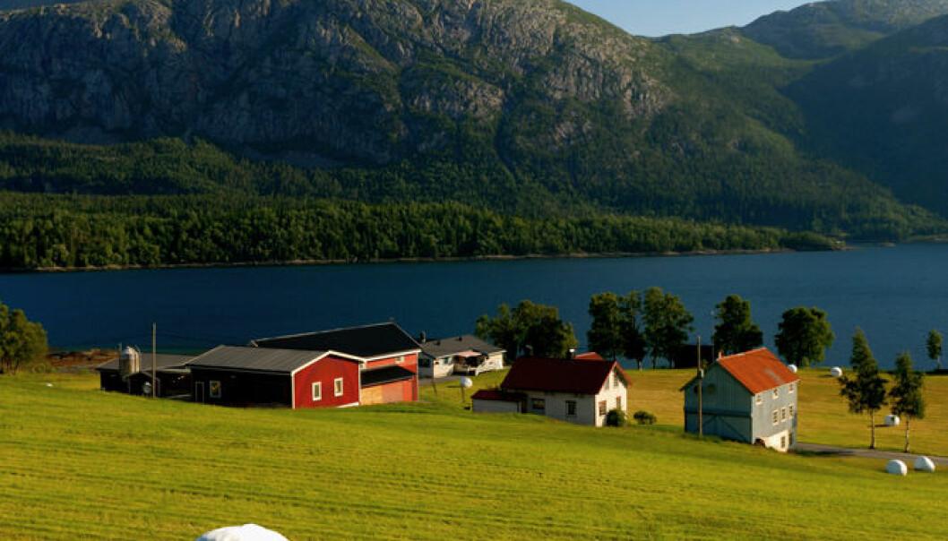Det er god plass på den norske landsbygda for trangbodde europeere. (Illustrasjonsfoto: www.colourbox.no)