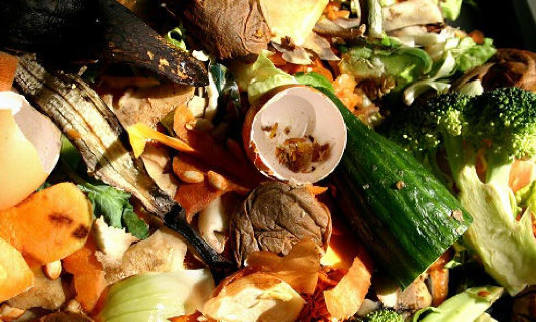 Mengden mat som kastes i Norge årlig, kunne ha gitt næring til rundt fem millioner mennesker hvert år. (Foto: Shutterstock)