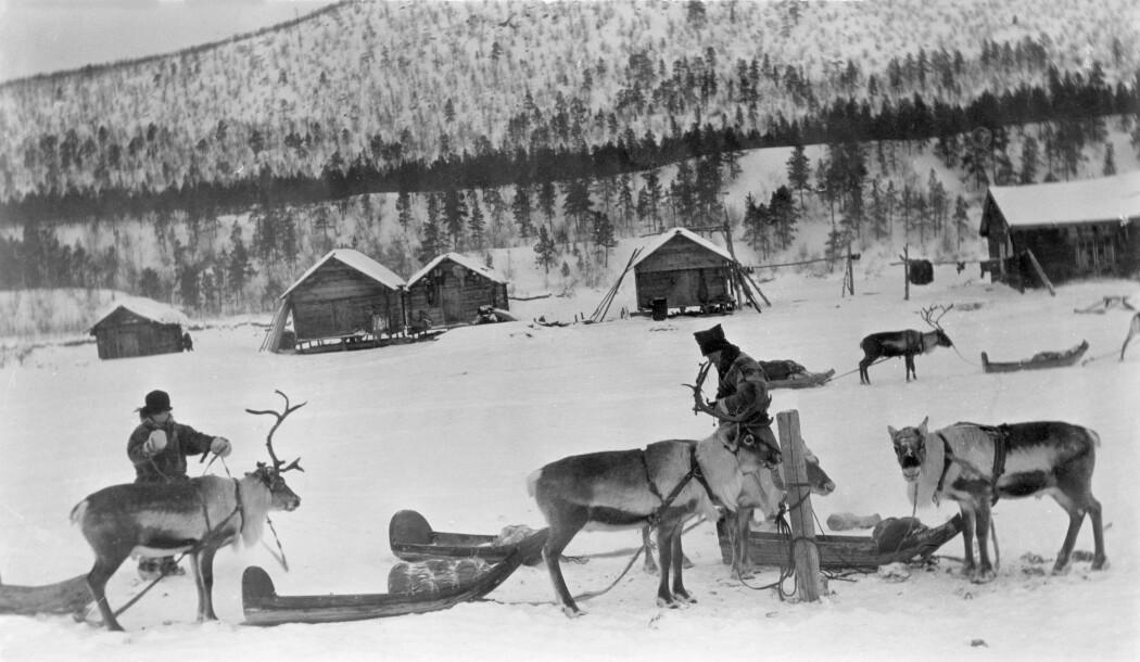 Transport av varer, og fornemme personer, skjedde med rein og pulk vinterstid.