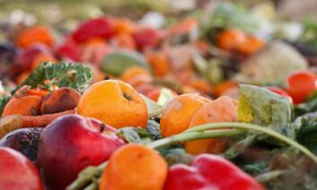 Hvert år kaster nordmenn over 300 000 tonn mat som kunne vært spist. (Foto: Shutterstock)