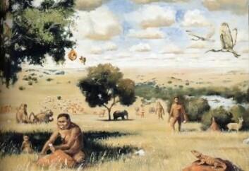 Slik ser en kunstner for seg livet på savannen for rundt en million år siden. Kanskje var han som skjærer kjøtt i venstre kant av bildet i sving langt tidligere enn som så. (Foto: (Illustrasjon: Walter Voigt/Wikimedia Creative Commons))