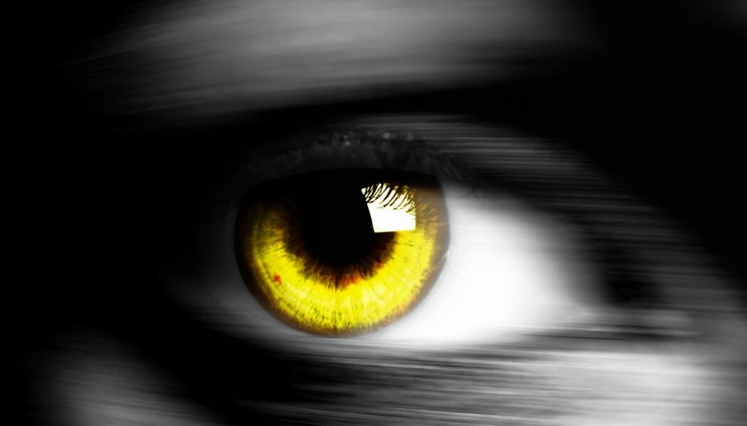 Du kan få kjøpt gule linser, men ellers har ikke mennesker gule øyne.