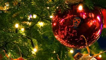 Mange tusen småkryp i juletreet