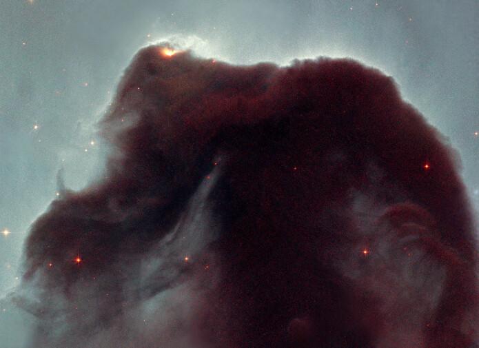 Dette er et nærbilde av Hestehode-tåken – en diger samling kosmisk støv som er avbildet av Hubble-teleskopet. Her er størrelsesforholdene helt annerledes, denne tåken er rundt et lysår på tvers.