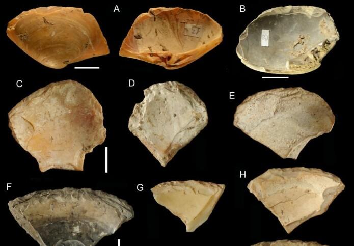 Eksempler på skjell som har blitt bearbeidet av mennesker til å bli brukt som verktøy. En del av disse skjellene kan ha blitt plukket rett fra havbunnen.