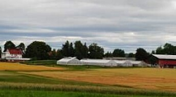 Mulig å gjøre landbruket mer klimavennlig