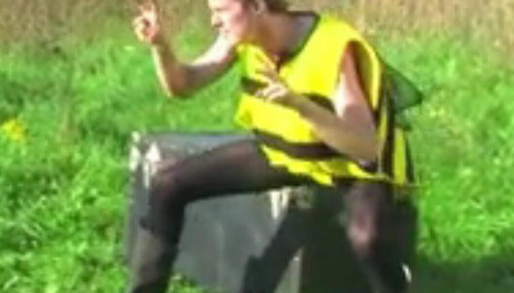 Michael Smith danser sin doktorgradsavhandling om vokterbier og tjuvbier. Michael Smith