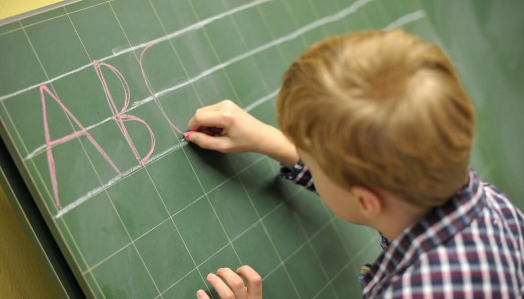 Av alle elever i grunnskolen i 2019 gikk 4,2 prosent – 27.000 elever – på private skoler.