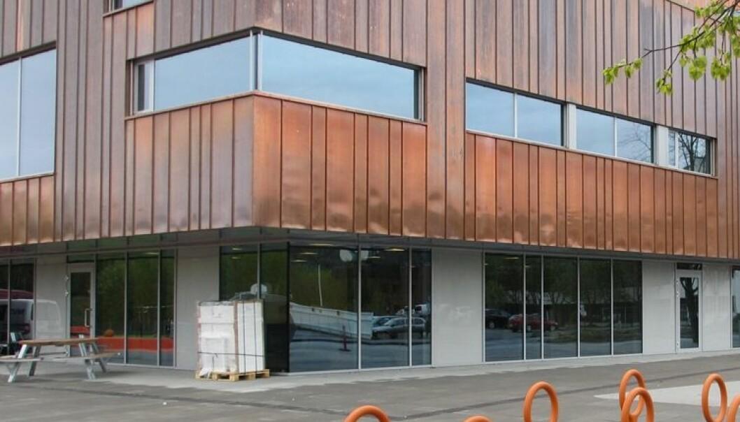 Bekymret for mindre dagslys i skolebygg