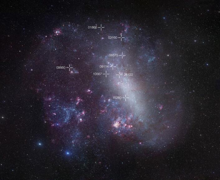 Vår nabogalakse Store magellanske sky. Posisjonene til åtte svake og kalde dobbeltstjerner brukt i studien er markert. (Foto: ESO/R. Gendler)