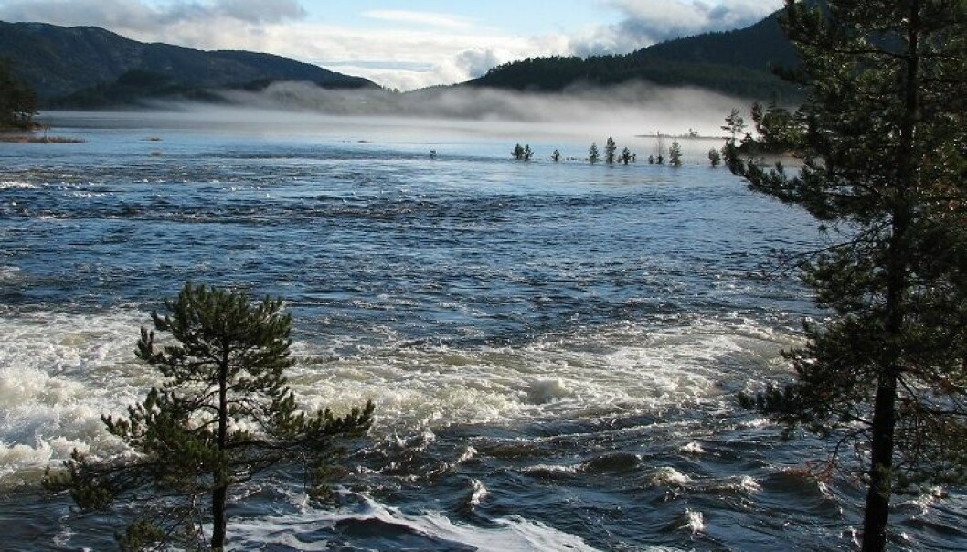 Sur nedbør påvirker fortsatt norske elver