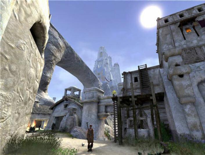 Scene fra Age of Conan. Populariteten til slike online dataspill har gjort at vi bruker mer tid på spill. (Skjermdump: Funcom)