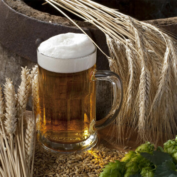 Carlsberg Laboratorium er grunnlagt i 1875 av J.C. Jacobsen, som ville forske i ølets kjemi for å kunne forbedre kvaliteten. Det spesielle er at forskningsresultater ikke holdes hemmelige – selv om konkurrentene kan dra nytte av dem. (Foto: Colourbox)