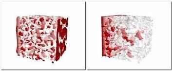 Til venstre viser simuleringsmodellen hvordan CO2 fordeler og oppfører seg i sandsteinens porerom under stasjonære strømningsforhold. Til høyre simuleres ikke-stasjonære strømningsforhold i nærheten av injeksjonsbrønnen. (Foto: (Illustrasjon: Numerical Rocks))