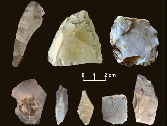 15 000 år gamle gjenstander fra Texas viser at menneskene kom til Amerika tidligere enn mange arkeologer har trodd. (Foto: Michael R. Waters)