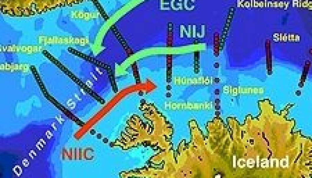 Havstrømmer gjennom Danmarkstredet. Observasjoner fra ekspedisjonene i oktober 2008 og august 2009 er merket med henholdsvis grønt og rødt.  (EGC=Østgrønlandstrømmen, NIJ=Nordislandjeten, NIIC=Golfstrømmens forlengelse vest av Island) (Illustrasjon: Universitetet i Bergen)