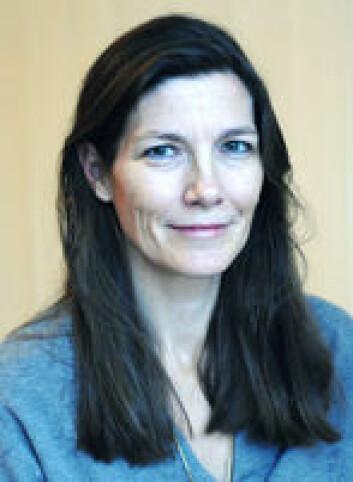 -Beslutninger i utenriks- og sikkerhetspolitikken tas oftere i Brussel, sier Helene Sjursen.