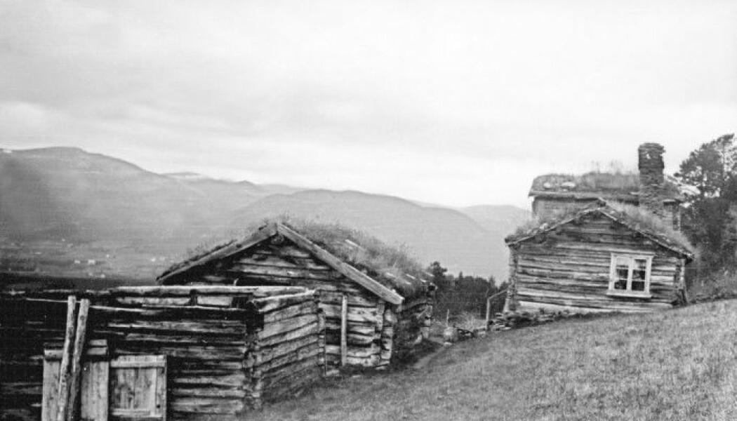 Det døde like mange barn og unge hos rike gårdbrukere som det gjorde hos fattigere husmenn i Trøndelag på 1800-tallet. Dette bildet er fra husmannsplassen Børja i Oppdal.