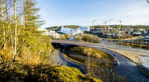 Nest varmeste januar i Oslo så langt