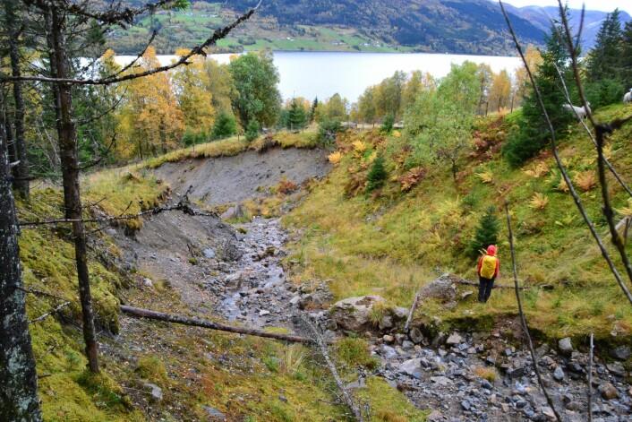 Arret i skråninga viser at det har vore store krefter i sving. (Foto: Tore H. Medgard)