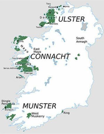 Som det fremgår av de grønne flekkene på kartet er den befolkningen som har irsk som hovedmål primært plassert  på vestkysten. (Foto: *)