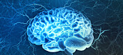 Hjernen er tema for Forskningsdagene 2020