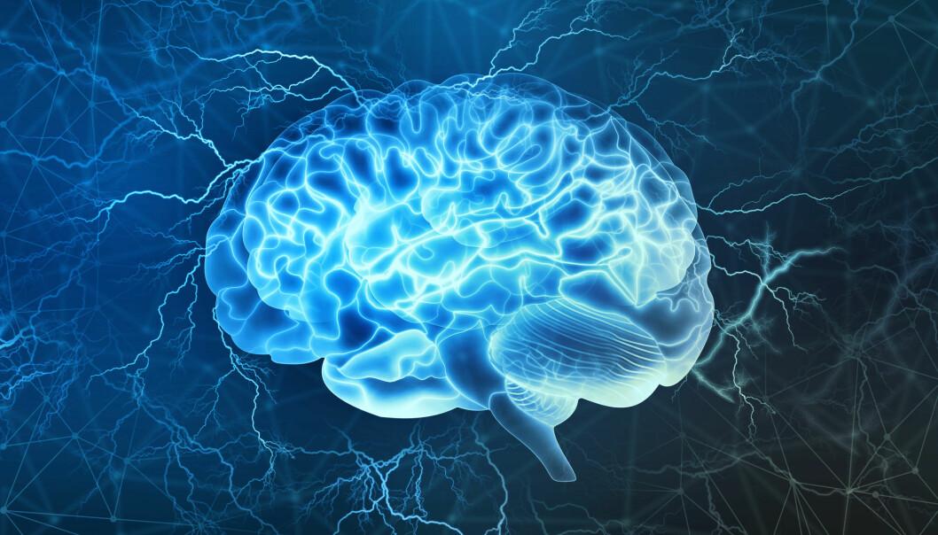 Norge har gode miljøer for hjerneforskning, både grunnleggende forskning og forskning for kunnskap praktisk pasientbehandling.