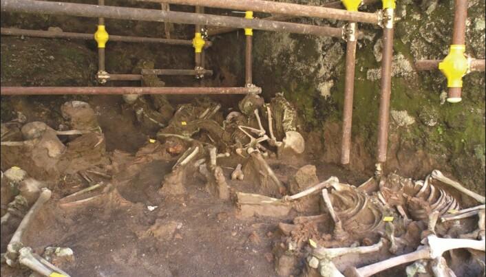 Hvordan døde egentlig romerne under Vesuv-utbruddet i år 79?