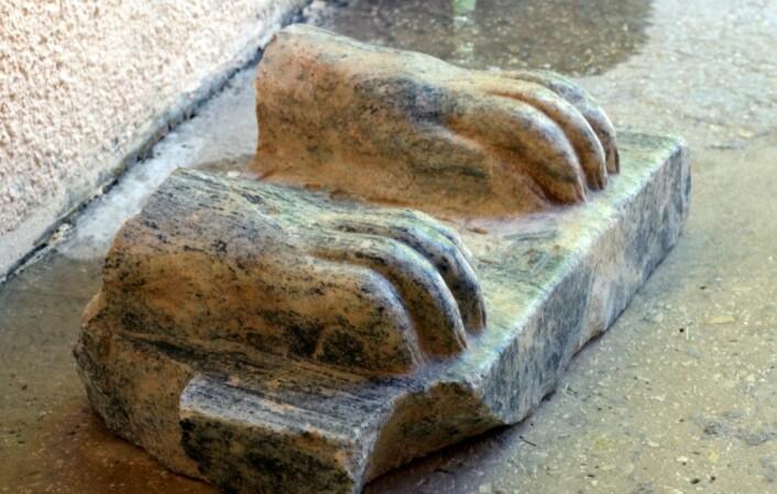 Bare deler av statuen er funnet, men inskripsjonen mellom løveføttene forteller at denne sfinksen en gang hadde hodet til kong Menkaure. (Foto: Amnon Ben-Tor/Sharon Zuckerman)