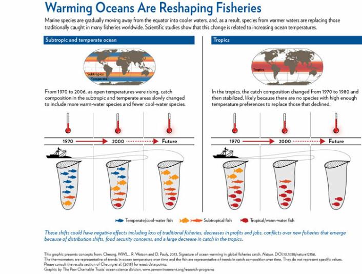 Framstillingen viser hvordan globale fangster i følge ny Nature-studie endres som følge av klimaendringer. (Foto: (Illustrasjon: The Pew Cheritable Trust))