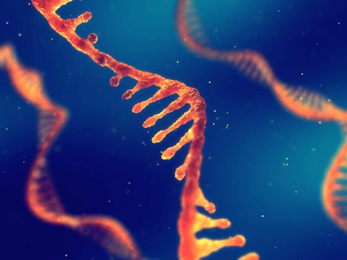 Forskere har oppdaget et nytt lag i livets genetiske kode