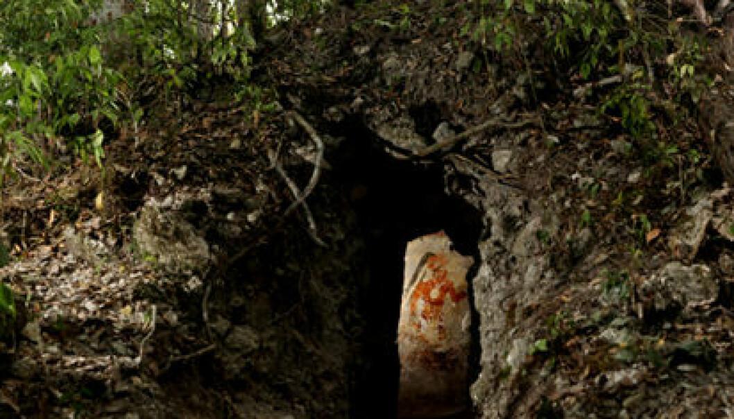 Haugen dekker et lite hus med veggmalerier fra 800-tallet. Huset står i utkanten av restene etter Xultún, en by som en gang hadde titusener av innbyggere. Tyrone Turner 2012 National Geographic