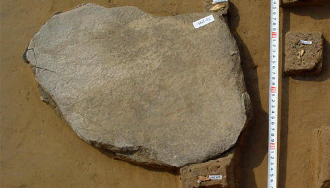 Stein brukt til å male mel, Kina, Shizitan, LGM. Jiming Shi