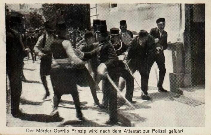 Et postkort som viser øyeblikket da terroristen Gavrilo Princip blir arrestert. På grunn av sin unge alder, slapp Princip dødsstraff. (Foto: Wikimedia Commons)