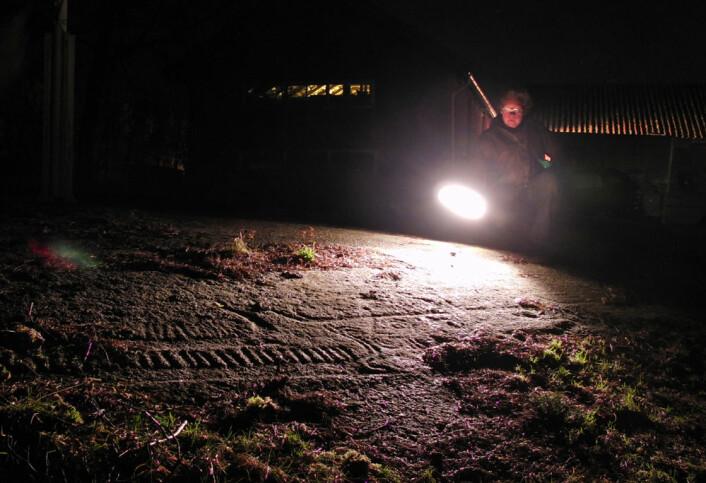 Savid Vogt ved helleristning på Lille Borge gård, Fredrikstad (Foto: Arnfinn Christensen)
