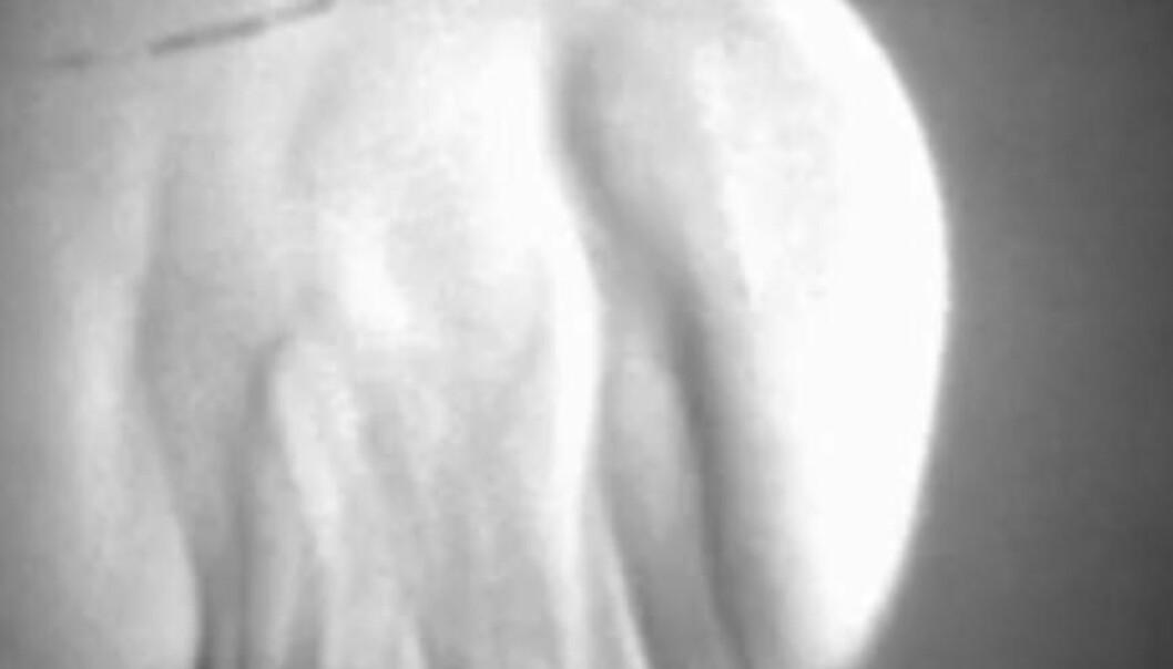 Plasmasky kan gi svar på kulelyn-mysterium
